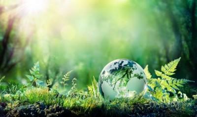 por_que_se_celebra_el_dia_mundial_del_medio_ambiente_1775_600