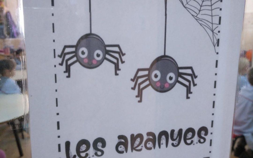 P5A la classe de les Aranyes